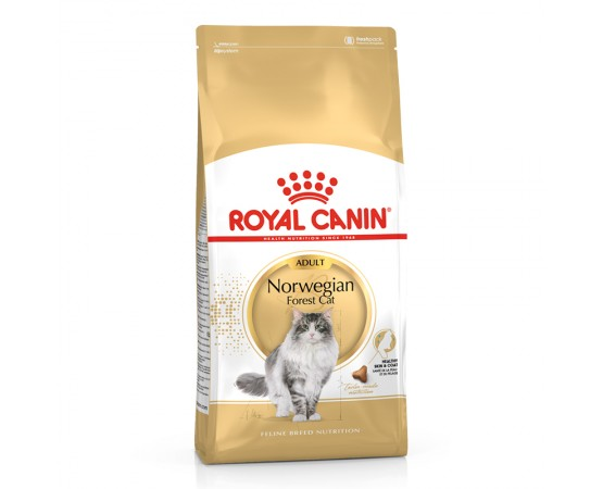Royal Canin Feline Breed Nutrition Norwegian Forest