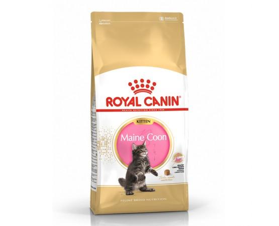 Royal Canin Feline Breed Nutrition Maine Coon Kitten