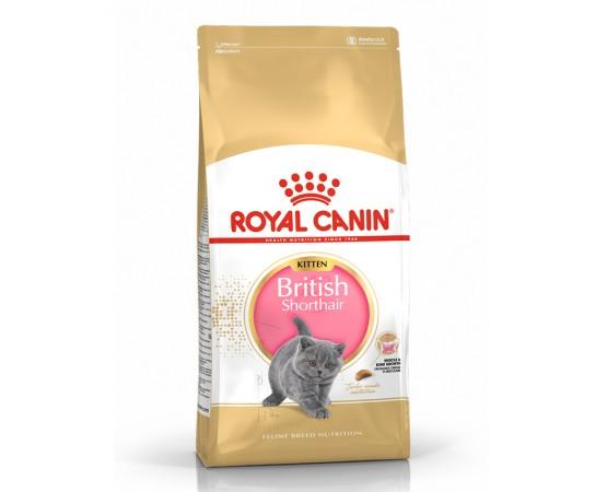 Royal Canin Feline Breed Nutrition British Shorthair Kitten
