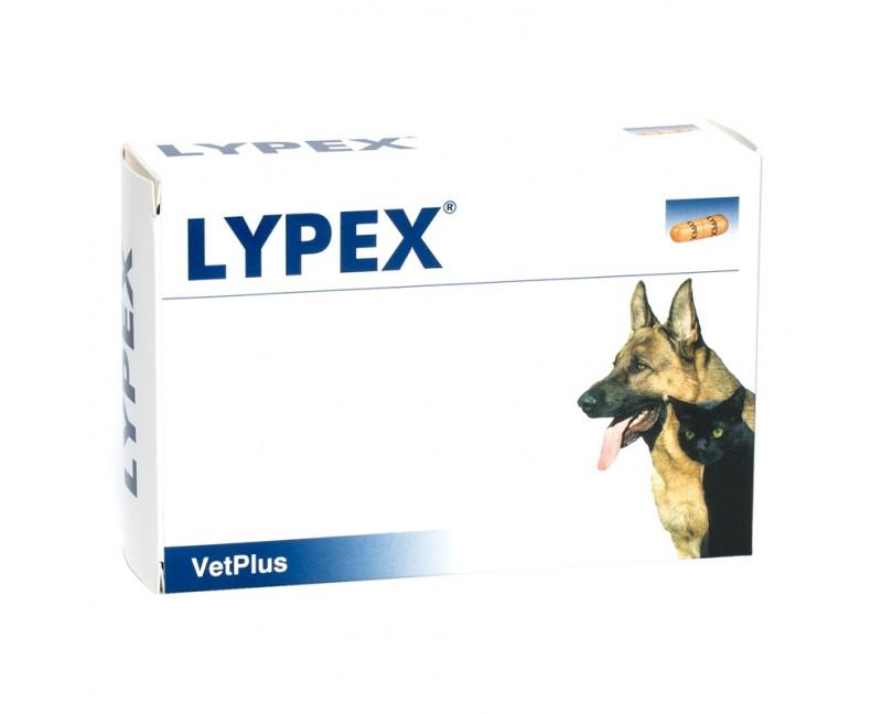 Lypex® 60 Streu-Kapseln