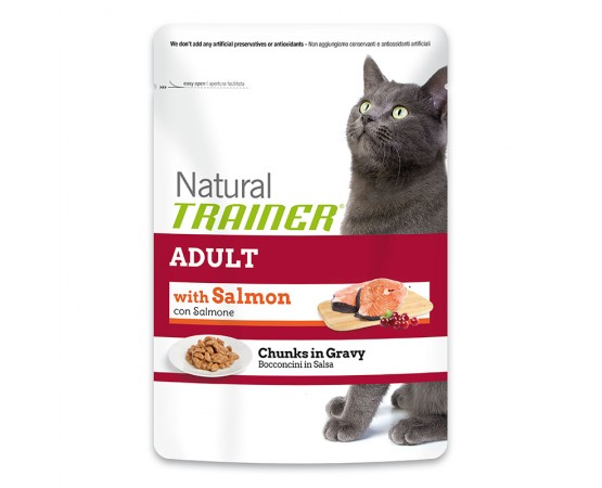 Trainer Natural Adult Lachs 12 x 85 g